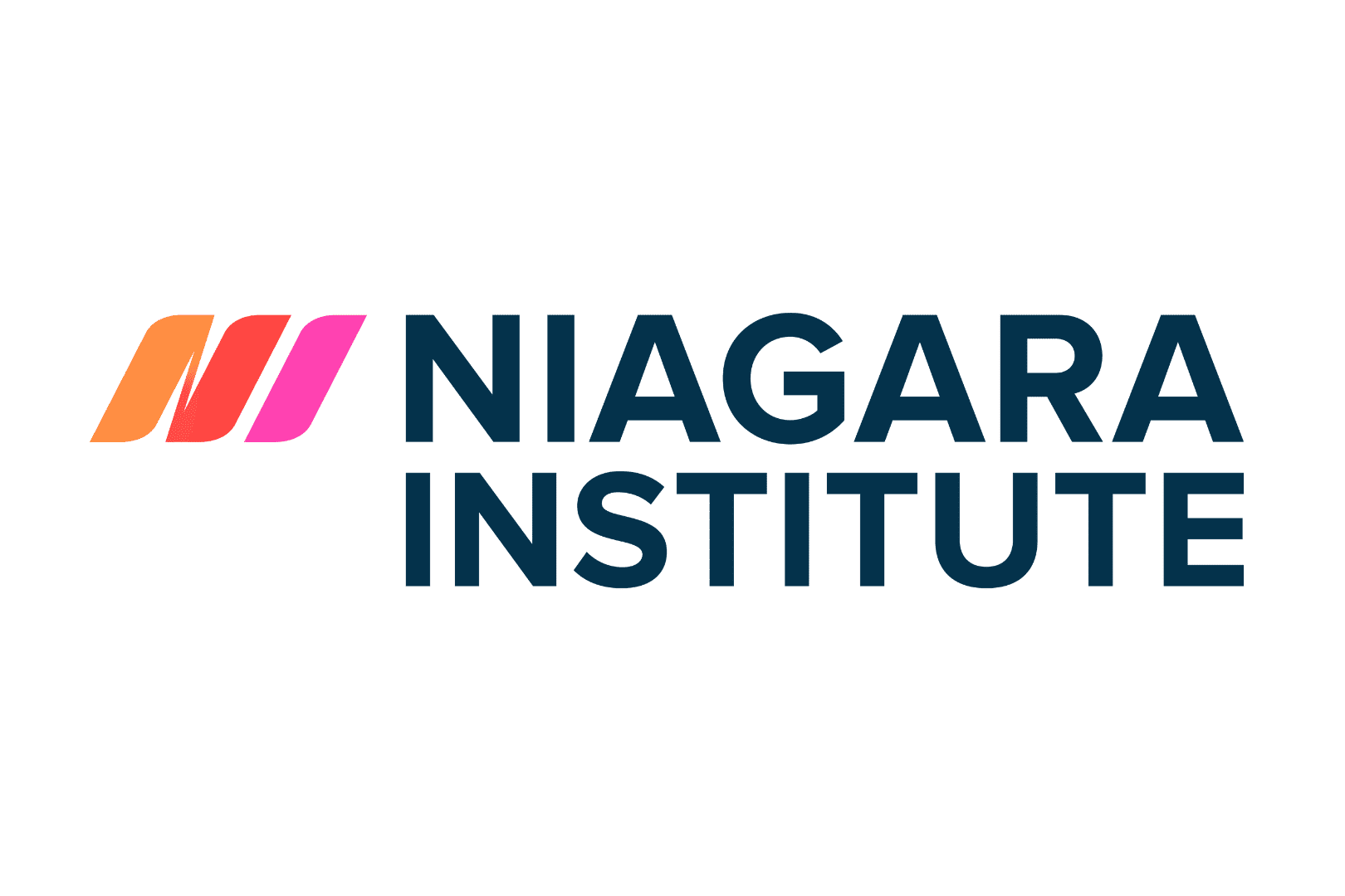Niagara Institute Logo for Partners Section About Us (1)